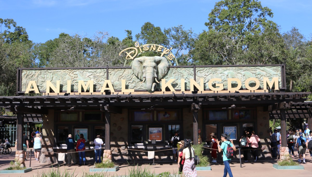 RUMOR - More Budget Cuts Coming to Walt Disney World's Animal Kingdom